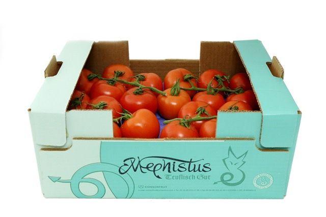 Tomate mephistus